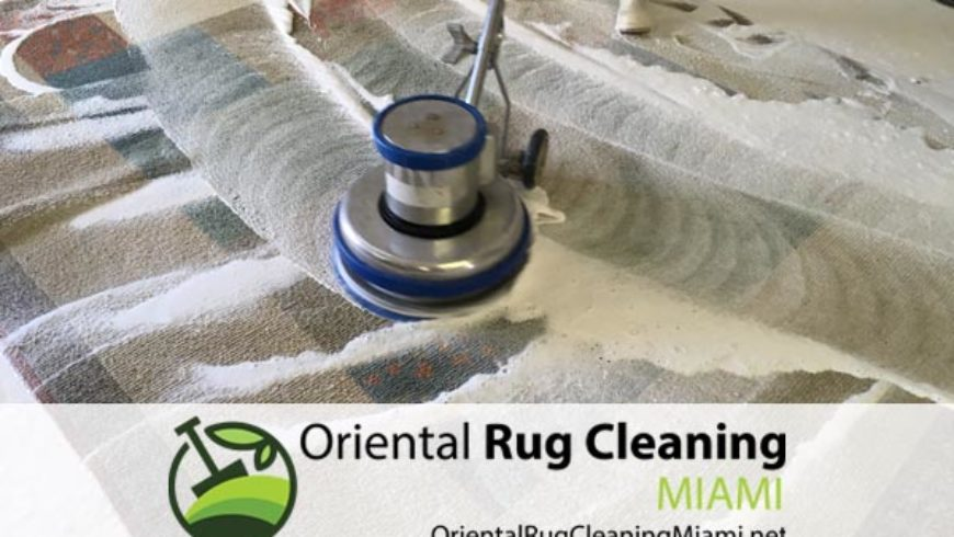 Removing Pet Odor from Rugs and Carpets in Miami