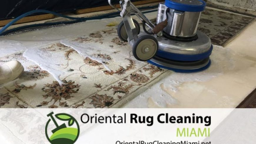 Pet Stain Damage Cleaning And Smell Removal in Miami