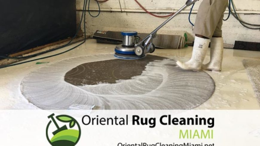 Find a Quality of Pet Stain Removal in Miami