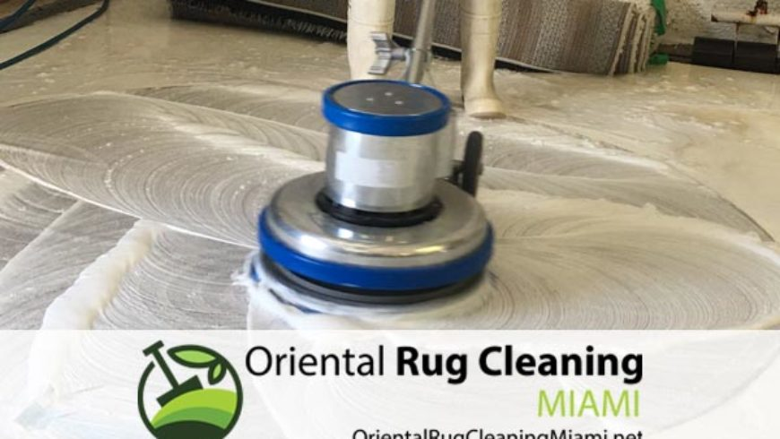 Affordable Pet Odor and Stain Removal in Miami